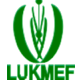 LUKMEF-CAMEROON - Martin Luther King Jr. Memorial Foundation